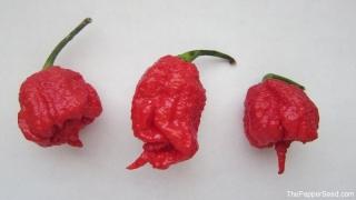 Carolina Reaper Peppers